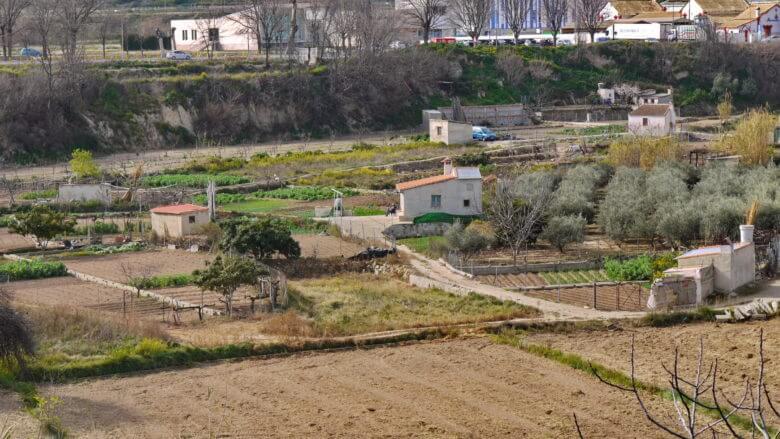 Ohne Bewässerung wären diese Gärten in der Region Murcia eine Wüste