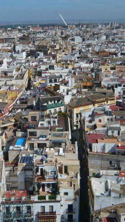 Blick von der Giralda auf die Altstadt von Sevilla