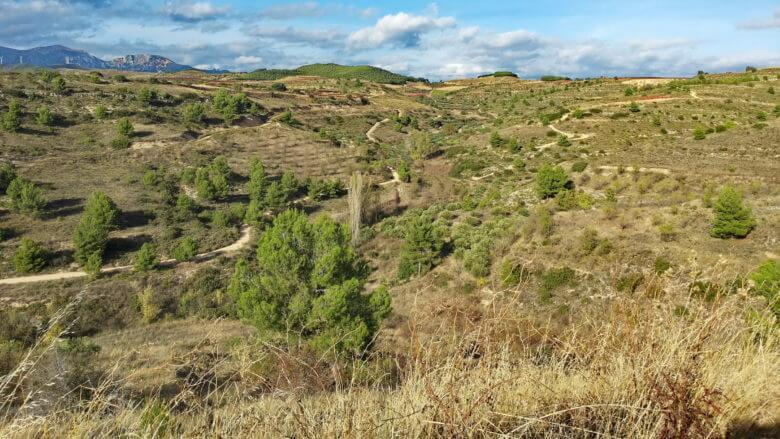 Schöne Landschaft zwischen Viana und Torres del Rio