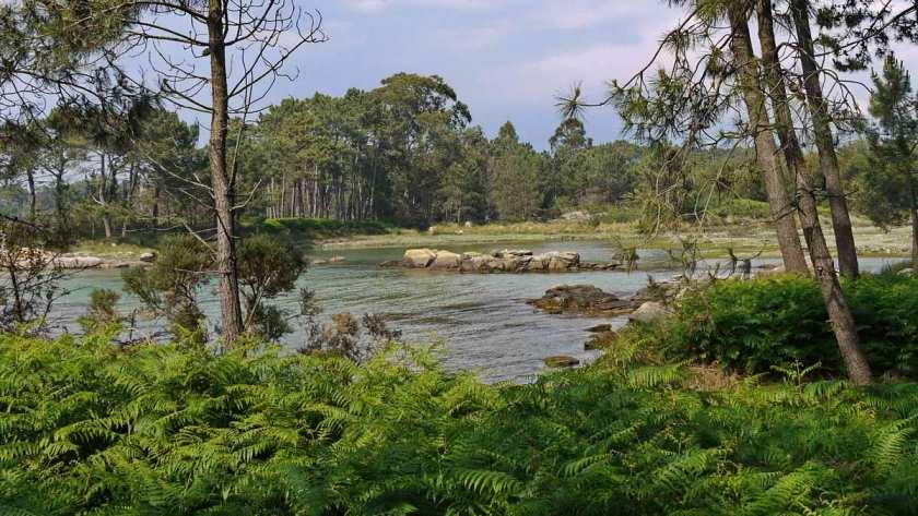 Im Parque Natural de Carreirón auf Arousa