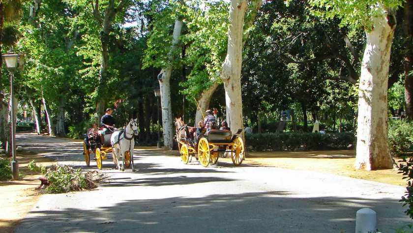 Kutschenfahrt durch den María Luisa Park
