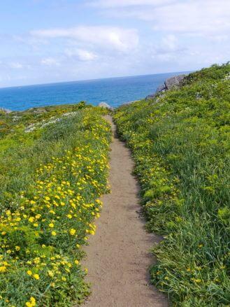 Fußweg zum Kap