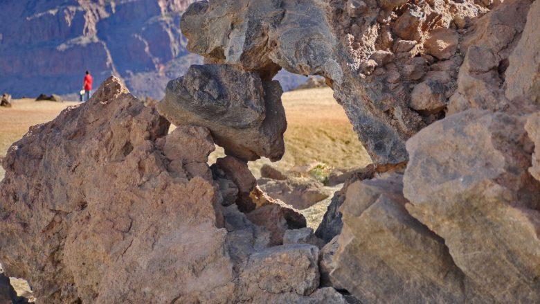 In den Siete Cañadas der Caldera des Teide-Nationalparks