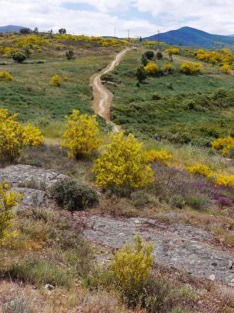 Auf dem Jakobsweg zwischen Ponferrada und Astorga
