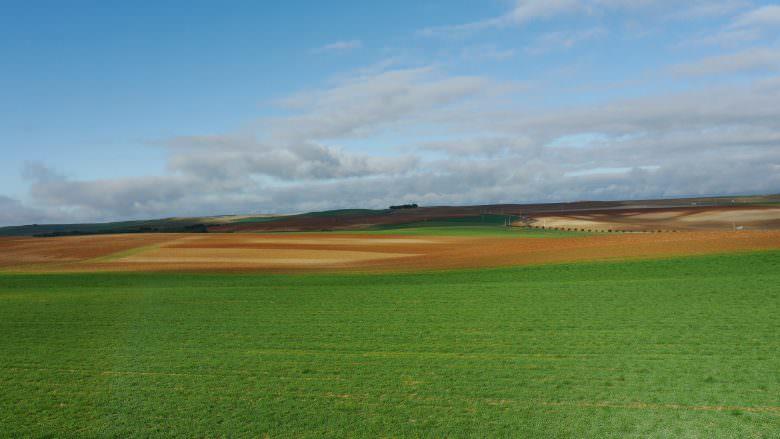 Landschaft in der Provinz Valladolid rund um das Dorf von Siete Iglesias de Trabancos