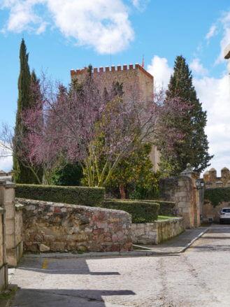Castillo de Enrique II de Trastámara, heute ein Parador
