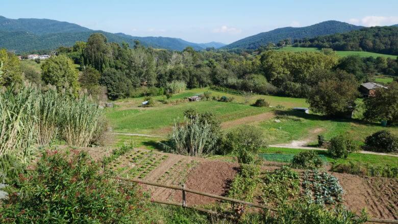 Landschaft bei Santa Pau