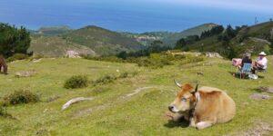 Mirador del Fito (Costa Verde)