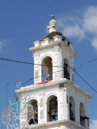 Storch auf Turm