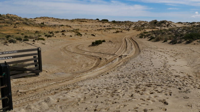 Nationalpark Coto de Doñana